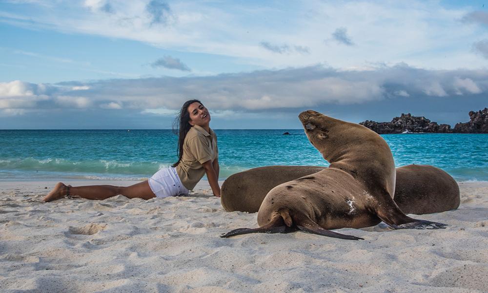 https://www.cheapfareguru.com/fly-away/wp-content/uploads/2019/05/galapagos-sea-lion.jpg